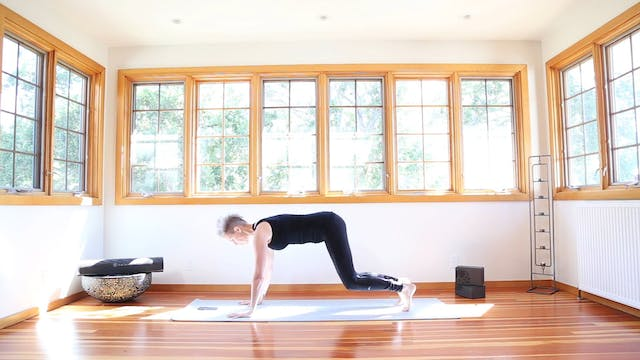 Yoga Shred®: Faster Running Planks