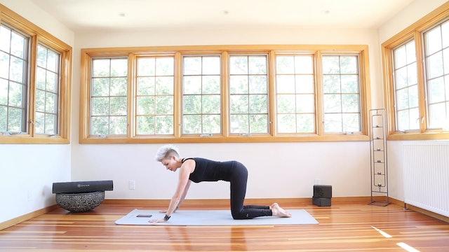 Yoga Shred®: Wild Thing Plank Super Pushups