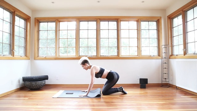 Yoga Shred®: SOCKS ON Running Plank