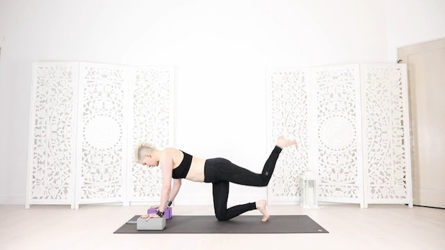Slow Flow Booty Blaster Hip Opening Yoga Shred®