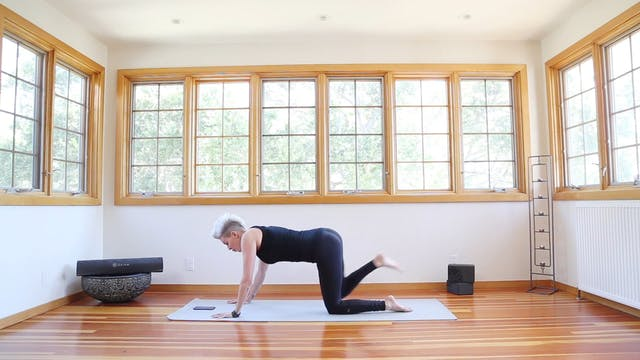 Q Yoga Shred®: Corkscrew Plank Beginn...