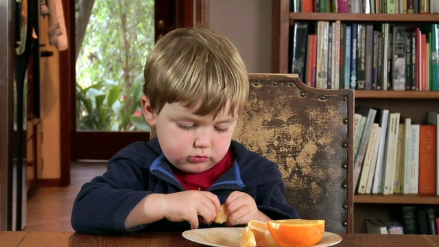 Copy-Kids Oranges