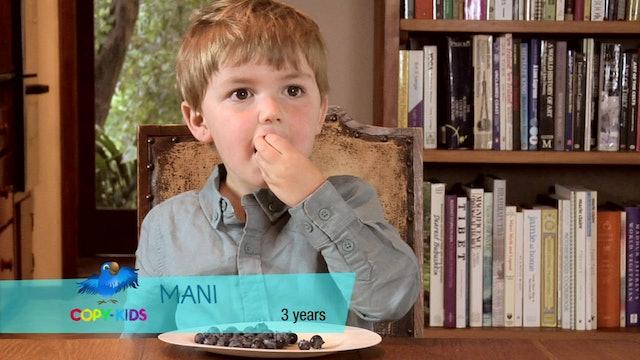 Copy Kids Blueberries