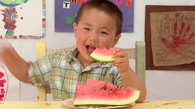 Copy-Kids 2 Watermelon