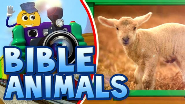 Ep.04-Real Bible Animals-PicTrain