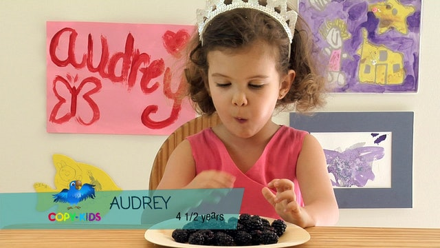 Copy-Kids 2 Blackberries