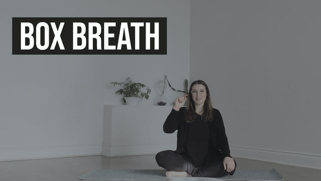 Box Breath with Mackenzie