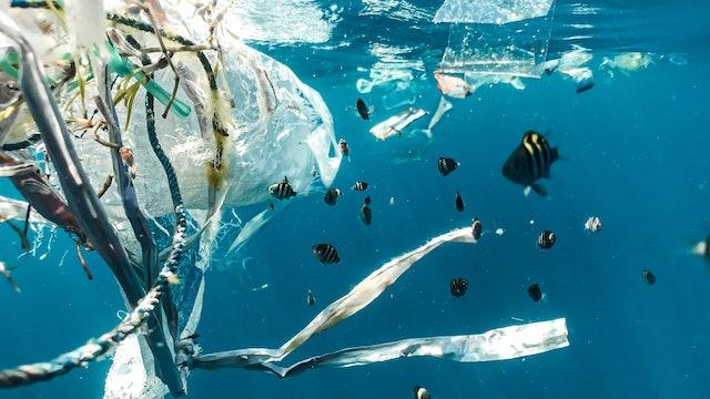Ocean Plastic Pollution Workshop