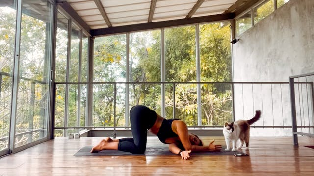 Post-Surf / Upper Body Stretch
