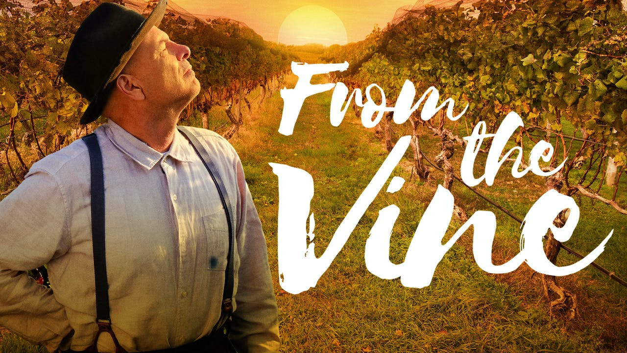 FROM THE VINE - No Festival Required