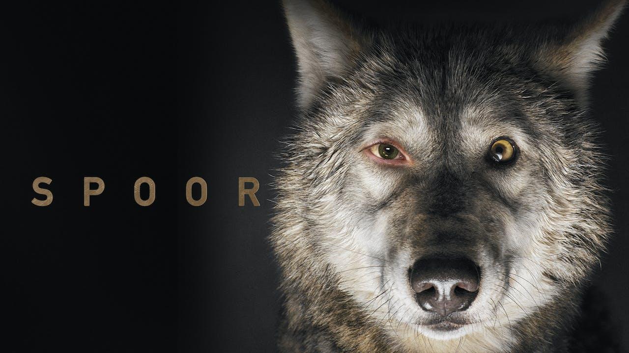 SPOOR - Naro Cinema