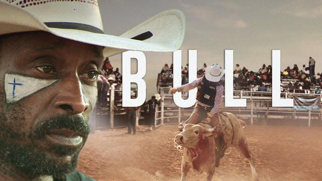 BULL - Charlotte Film Society