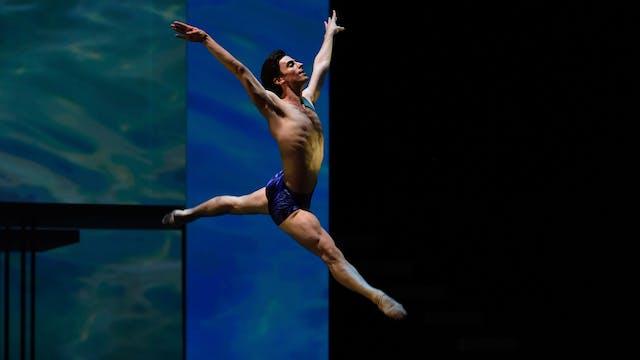 Possokhov's Swimmer | Excerpt