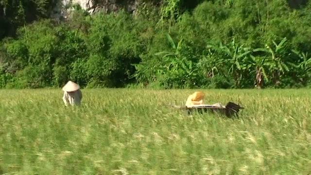 Hành Trình Xuyên Việt 02