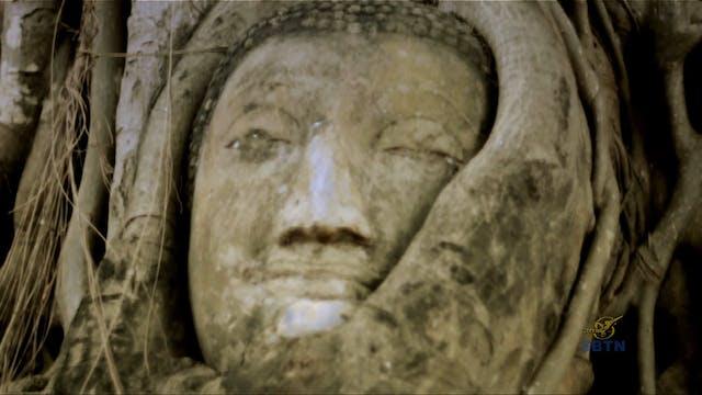 Giác Ngộ : Theo Bước Chân Phật (Phần 5)