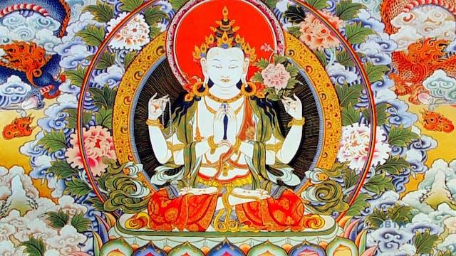 Giác Ngộ : Theo Bước Chân Phật (Phần 19)