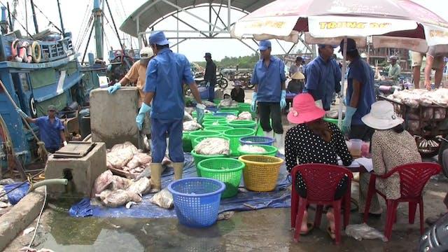 Hành Trình Xuyên Việt 43