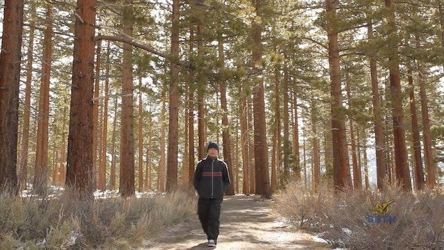 Hành Trình Xuyên Mỹ - Hồ Tahoe và Las Vegas (Phần 16)