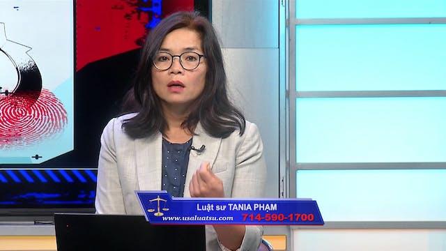 Luật Pháp & Xã Hội | 14/10/2020