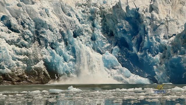 Hành Trình Xuyên Mỹ - Kodiak (Phầ...