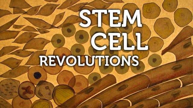 STEM CELL REVOLUTIONS –download-to-own for UK secondary schools