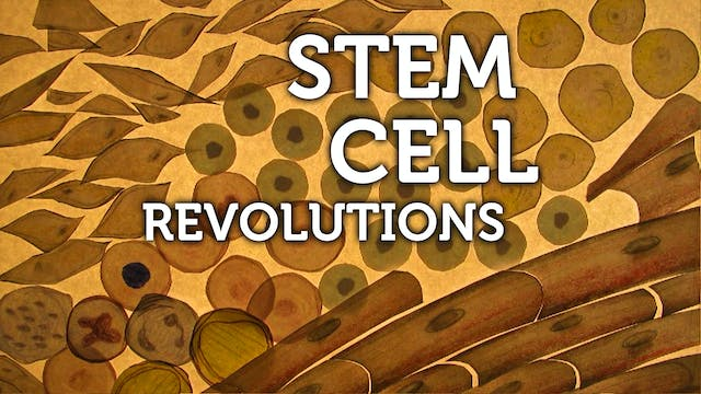 STEM CELL REVOLUTIONS – for personal use only