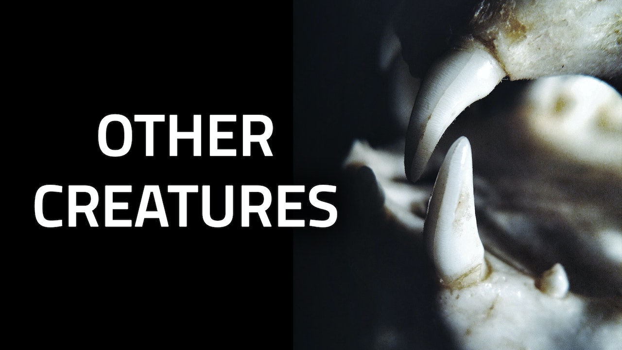 MONSTERS | Other Creatures