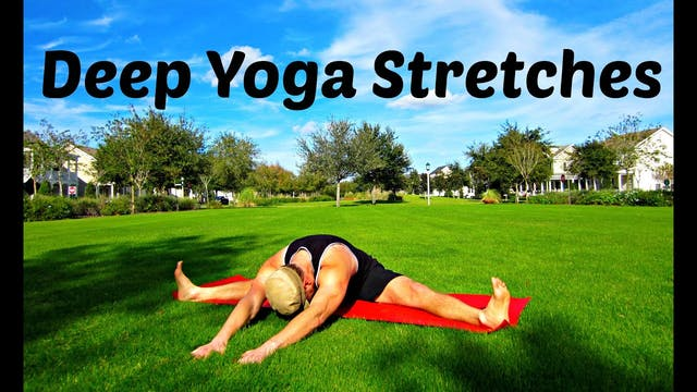 Beginner Yoga Stretches for Flexibility