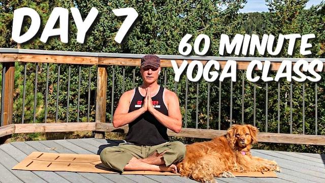 Day 7 - 7 Day Yoga Foundation Program - MEDITATIVE
