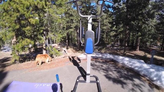 SVF 365 - Day 5 - Pull Ups, Pilates & Planks Muscle Shredder