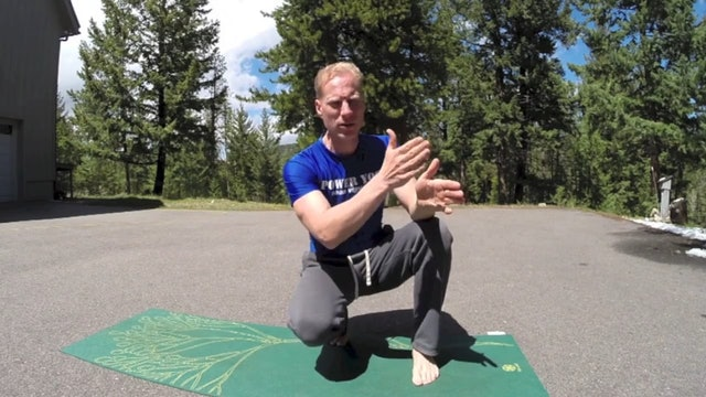 Day 4 - Lunges and Warriors - 7 Day Beginner Yoga Program