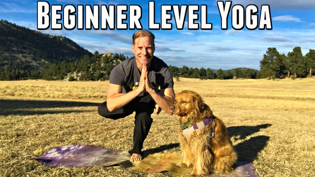 7 minute Beginner Level Yoga Flow Class