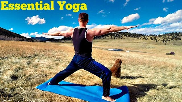 Essential Power Yoga for Strength and Weight Loss - 30 min Flow Class