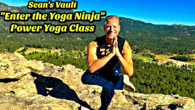 Vault: Enter the Yoga Ninja - Power Yoga