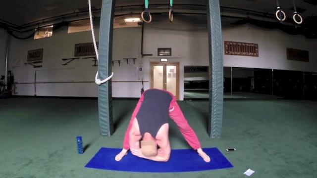 SVF 365 - Day 12 - Majestic Cardio and Flexibility Stretch Routine