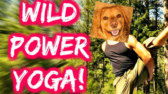 Yoga in the Wild Sequel w/ Cardio Abs...
