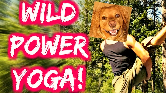 Yoga in the Wild Sequel w/ Cardio Abs Finisher!