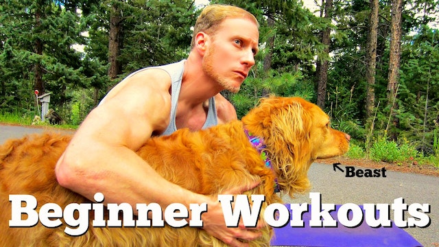 Sean's Quick Beginner and Intermediate Workouts