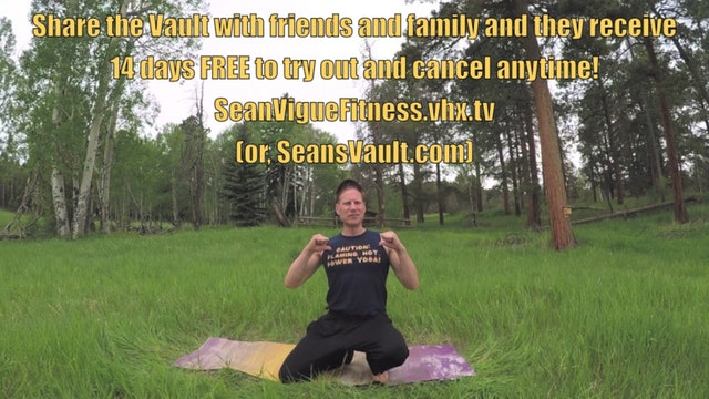 Vault: Sean's Favorite Power Yoga Flow (part 2 of 2)
