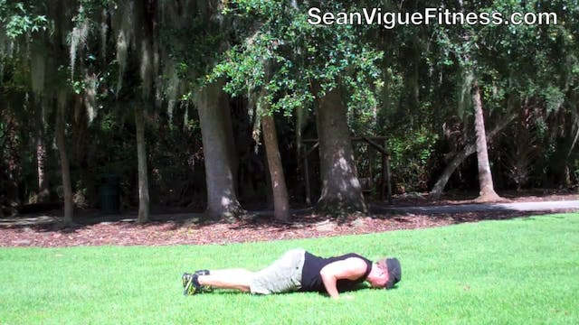 46 Push Up Variations with Sean