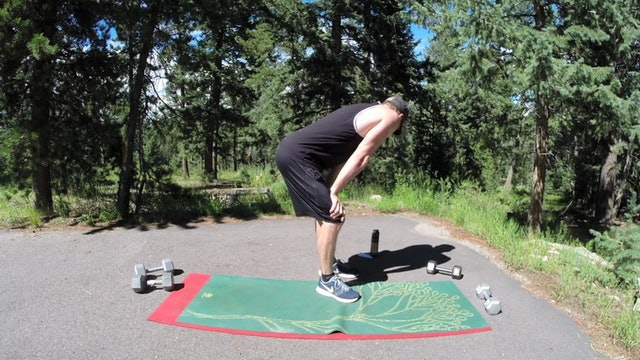 Vault Warrior Dumbbell Full Body Workout