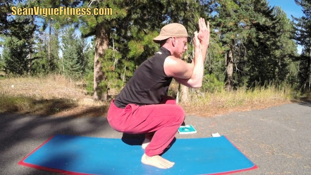 The Best Damn Power Yoga Workout Video!