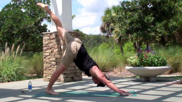 Vault Raw and Wild Power Yoga Core Flow