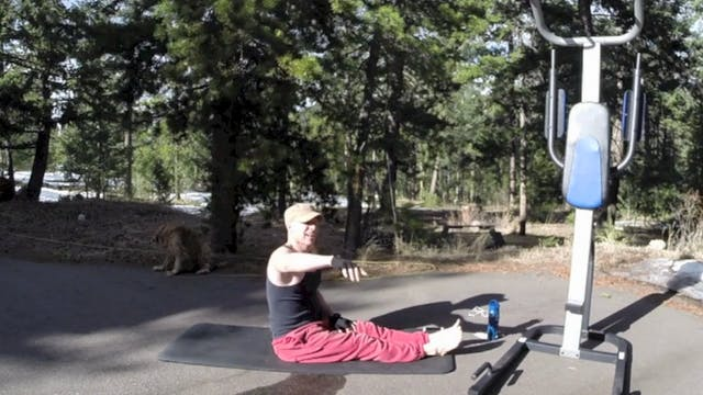Vault Fat Burning Cardio PYLATA Workout w/ Pull-Up Holds - SVF 365 preview