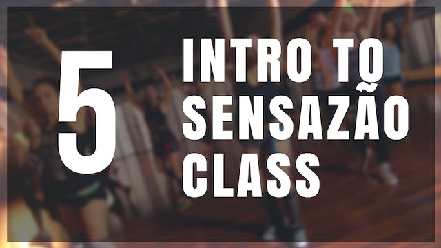 Intro to Sensazão | 5