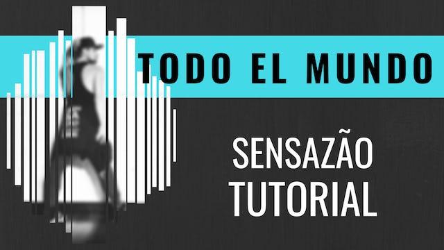 """""""Todo El Mundo"""" Sensazao Tutorial"""