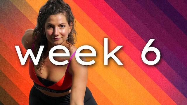WEEK6: javiBODI