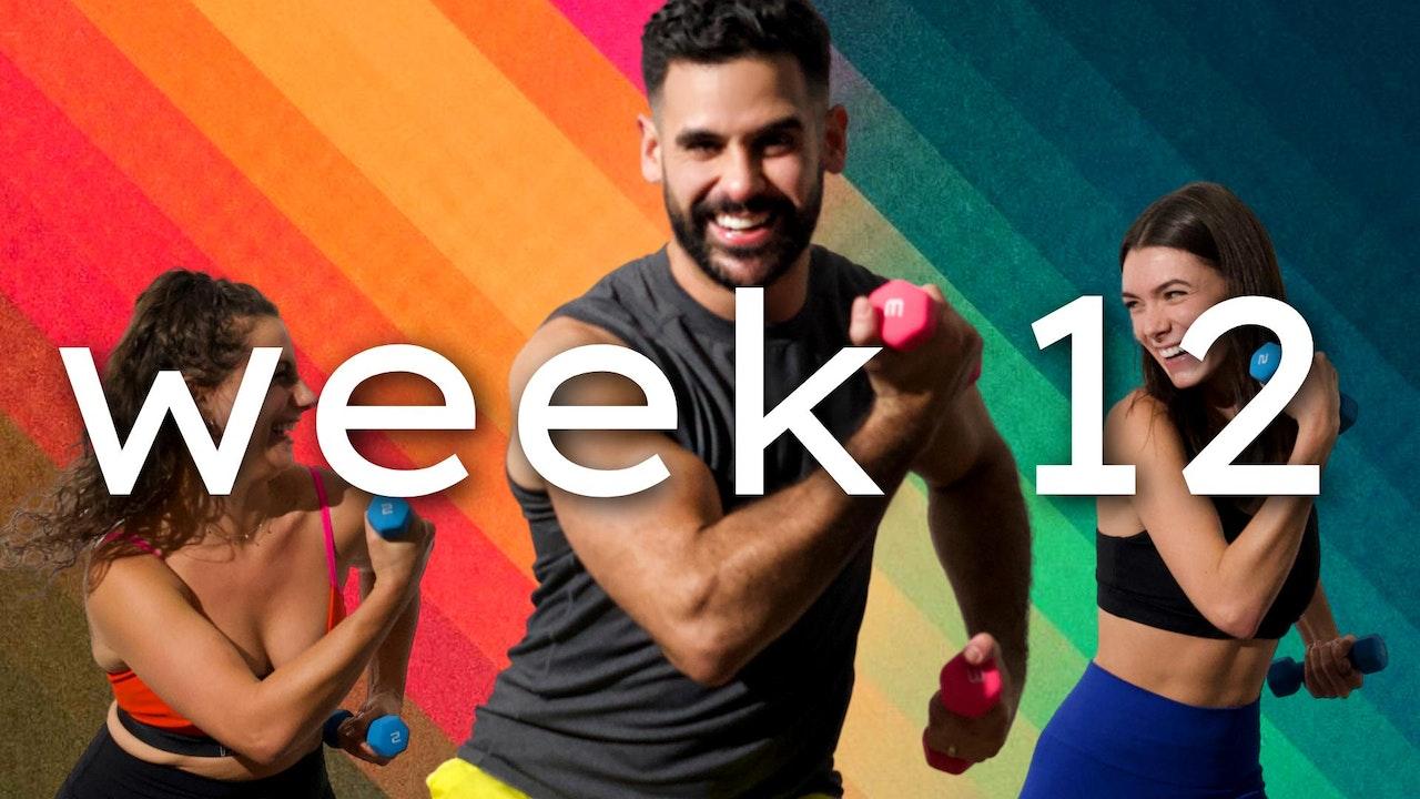 WEEK12: javiBODI