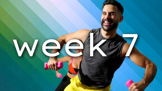 WEEK7: javiBODI