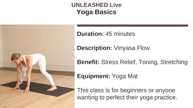 Yoga Basics - December